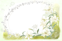 Flores da alma molduras (3).png