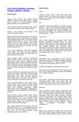 Copy of Cara Teknis Budidaya Tanaman Sengon.doc