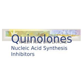 Quinolones2.ppt